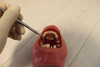 ポジショニング下前歯(ミラー)