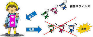 免疫のイメージ